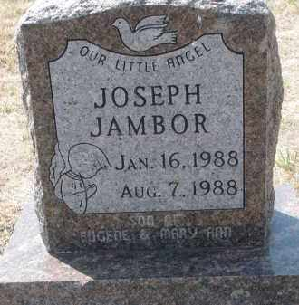 JAMBOR, JOSEPH - Bon Homme County, South Dakota | JOSEPH JAMBOR - South Dakota Gravestone Photos