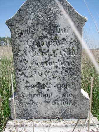 KLINK, EMILA - Bon Homme County, South Dakota   EMILA KLINK - South Dakota Gravestone Photos