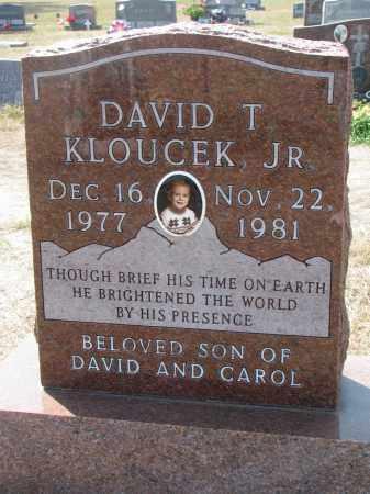 KLOUCEK, DAVID T. JR. - Bon Homme County, South Dakota | DAVID T. JR. KLOUCEK - South Dakota Gravestone Photos