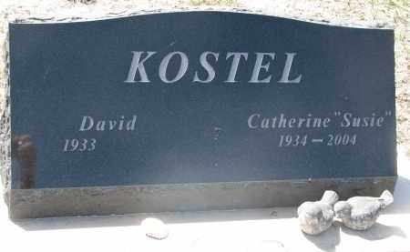 KOSTEL, DAVID - Bon Homme County, South Dakota | DAVID KOSTEL - South Dakota Gravestone Photos