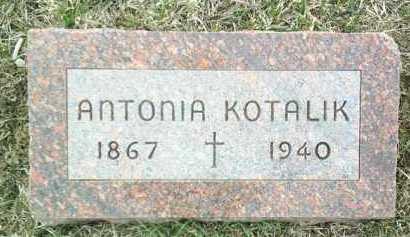 KOTALIK, ANTONIA - Bon Homme County, South Dakota | ANTONIA KOTALIK - South Dakota Gravestone Photos