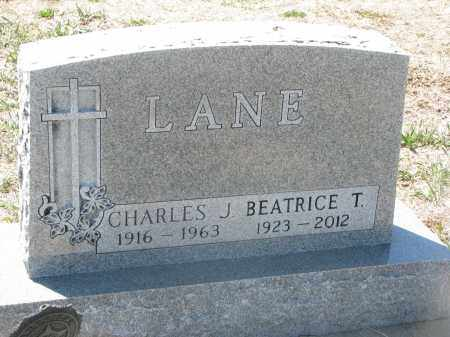 LANE, BEATRICE T. - Bon Homme County, South Dakota | BEATRICE T. LANE - South Dakota Gravestone Photos