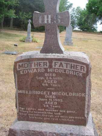 MCGOLDRICK, EDWARD - Bon Homme County, South Dakota   EDWARD MCGOLDRICK - South Dakota Gravestone Photos