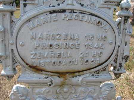 PECENKOVA, MARIE (CLOSEUP) - Bon Homme County, South Dakota | MARIE (CLOSEUP) PECENKOVA - South Dakota Gravestone Photos