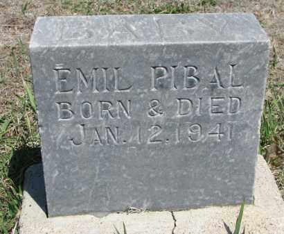 PIBAL, EMIL - Bon Homme County, South Dakota | EMIL PIBAL - South Dakota Gravestone Photos