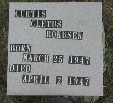 ROKUSEK, CURTIS CLETUS - Bon Homme County, South Dakota | CURTIS CLETUS ROKUSEK - South Dakota Gravestone Photos