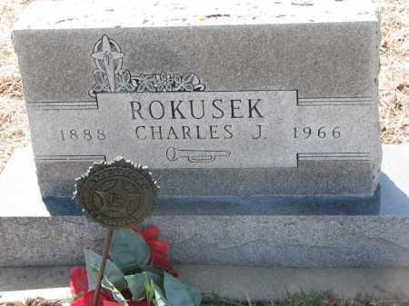 ROKUSEK, CHARLES J. - Bon Homme County, South Dakota | CHARLES J. ROKUSEK - South Dakota Gravestone Photos