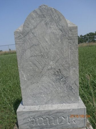 JOHANN, HAUCK - Bon Homme County, South Dakota | HAUCK JOHANN - South Dakota Gravestone Photos