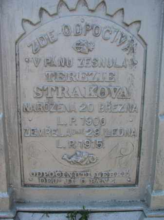 STRAKOVA, TEREZIE (CLOSEUP) - Bon Homme County, South Dakota | TEREZIE (CLOSEUP) STRAKOVA - South Dakota Gravestone Photos