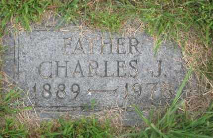 VELLEK, CHARLES J. - Bon Homme County, South Dakota | CHARLES J. VELLEK - South Dakota Gravestone Photos