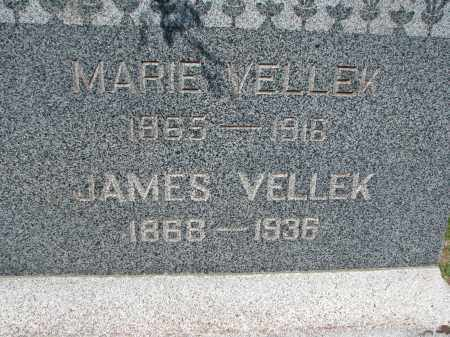 VELLEK, JAMES (CLOSEUP) - Bon Homme County, South Dakota | JAMES (CLOSEUP) VELLEK - South Dakota Gravestone Photos