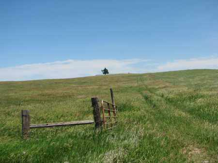 *VIEW FROM ROAD, . - Bon Homme County, South Dakota   . *VIEW FROM ROAD - South Dakota Gravestone Photos