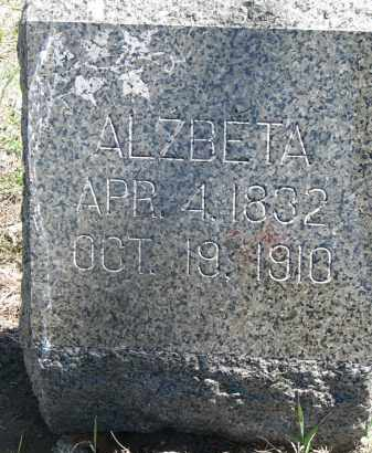 VYBORNY, ALZBETA - Bon Homme County, South Dakota | ALZBETA VYBORNY - South Dakota Gravestone Photos