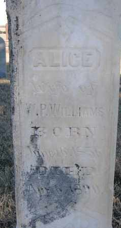 WILLIAMS, ALICE (CLOSEUP) - Bon Homme County, South Dakota | ALICE (CLOSEUP) WILLIAMS - South Dakota Gravestone Photos