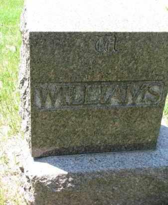WILLIAMS, FAMILY STONE - Bon Homme County, South Dakota | FAMILY STONE WILLIAMS - South Dakota Gravestone Photos