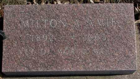 AMIE, MILTON A. - Brookings County, South Dakota   MILTON A. AMIE - South Dakota Gravestone Photos