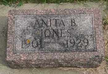 JONES, ANITA B. - Brookings County, South Dakota   ANITA B. JONES - South Dakota Gravestone Photos