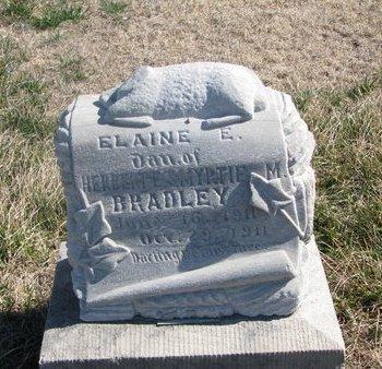 BRADLEY, ELAINE E. - Charles Mix County, South Dakota | ELAINE E. BRADLEY - South Dakota Gravestone Photos