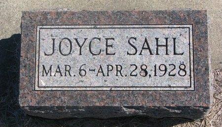 SAHL, JOYCE - Charles Mix County, South Dakota | JOYCE SAHL - South Dakota Gravestone Photos