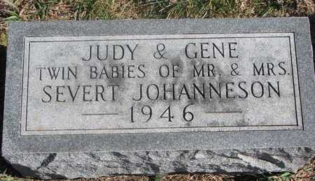 JOHANNESON, JUDY - Charles Mix County, South Dakota | JUDY JOHANNESON - South Dakota Gravestone Photos