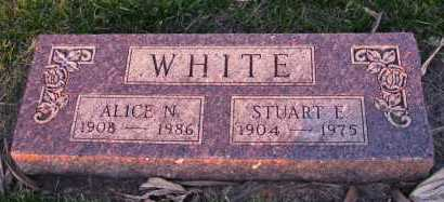 NORBECK WHITE, ALICE - Charles Mix County, South Dakota | ALICE NORBECK WHITE - South Dakota Gravestone Photos