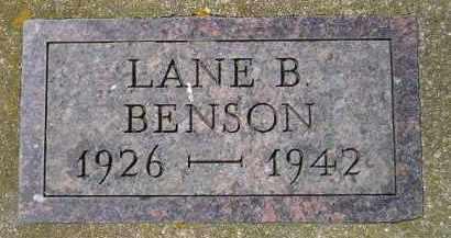 BENSON, LANE B. - Clark County, South Dakota | LANE B. BENSON - South Dakota Gravestone Photos