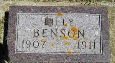 BENSON, LILLY - Clark County, South Dakota   LILLY BENSON - South Dakota Gravestone Photos