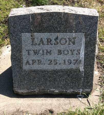 LARSON, TWIN BOYS - Clark County, South Dakota | TWIN BOYS LARSON - South Dakota Gravestone Photos