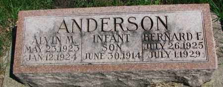 ANDERSON, ALVIN M. - Clay County, South Dakota | ALVIN M. ANDERSON - South Dakota Gravestone Photos