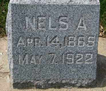 ANDERSON, NELS A. - Clay County, South Dakota | NELS A. ANDERSON - South Dakota Gravestone Photos
