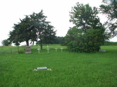 *DOWLIN, WIDE VIEW - Clay County, South Dakota | WIDE VIEW *DOWLIN - South Dakota Gravestone Photos