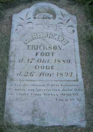 ERICKSON, CARL RICARD - Clay County, South Dakota | CARL RICARD ERICKSON - South Dakota Gravestone Photos