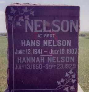 NELSON, HANS - Clay County, South Dakota | HANS NELSON - South Dakota Gravestone Photos
