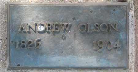 OLSON, ANDREW - Clay County, South Dakota | ANDREW OLSON - South Dakota Gravestone Photos