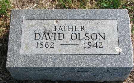 OLSON, DAVID - Clay County, South Dakota   DAVID OLSON - South Dakota Gravestone Photos