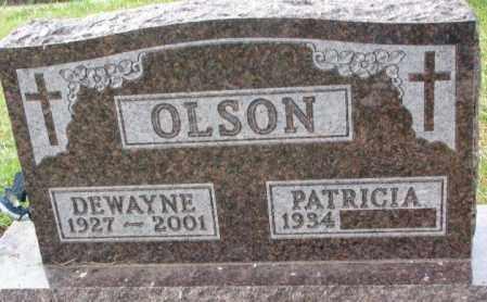 OLSON, PATRICIA - Clay County, South Dakota | PATRICIA OLSON - South Dakota Gravestone Photos