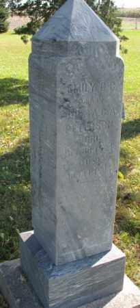 PETERSON, EMILY O.C. - Clay County, South Dakota | EMILY O.C. PETERSON - South Dakota Gravestone Photos