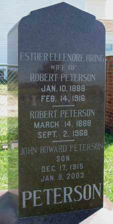PETERSON, ESTHER ELLENORE - Clay County, South Dakota | ESTHER ELLENORE PETERSON - South Dakota Gravestone Photos