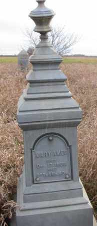 STANLEY, MARY - Clay County, South Dakota   MARY STANLEY - South Dakota Gravestone Photos