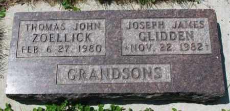 ZOELLICK, THOMAS JOHN - Clay County, South Dakota | THOMAS JOHN ZOELLICK - South Dakota Gravestone Photos