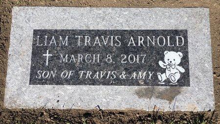 ARNOLD, LIAM TRAVIS - Codington County, South Dakota | LIAM TRAVIS ARNOLD - South Dakota Gravestone Photos