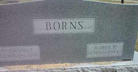 BORNS, HARRY F - Codington County, South Dakota | HARRY F BORNS - South Dakota Gravestone Photos