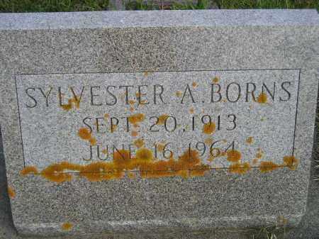 BORNS, SYLVESTER A. - Codington County, South Dakota   SYLVESTER A. BORNS - South Dakota Gravestone Photos
