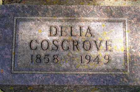 COSGROVE, DELIA - Codington County, South Dakota | DELIA COSGROVE - South Dakota Gravestone Photos