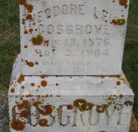 COSGROVE, THEODORE LEIGH - Codington County, South Dakota | THEODORE LEIGH COSGROVE - South Dakota Gravestone Photos