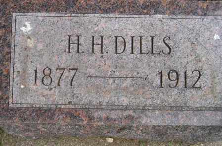DILLS, H.H. - Codington County, South Dakota | H.H. DILLS - South Dakota Gravestone Photos