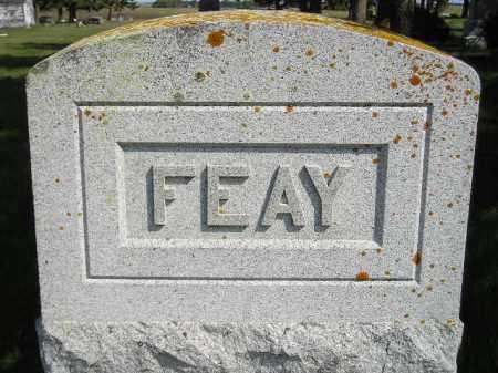 FEAY, FAMILY STONE - Codington County, South Dakota | FAMILY STONE FEAY - South Dakota Gravestone Photos