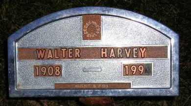 HARVEY, WALTER - Codington County, South Dakota | WALTER HARVEY - South Dakota Gravestone Photos