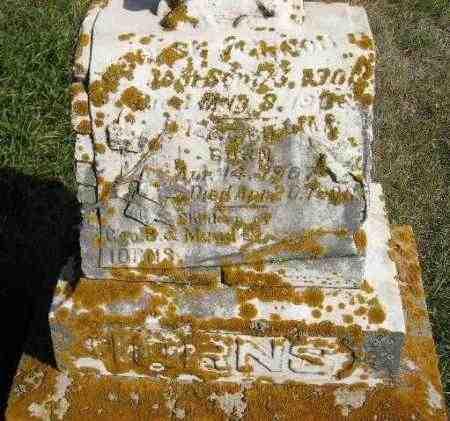 IORNS, GEORGE VERNON - Codington County, South Dakota | GEORGE VERNON IORNS - South Dakota Gravestone Photos