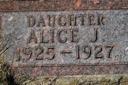 JOHNSON, ALICE JULIET - Codington County, South Dakota | ALICE JULIET JOHNSON - South Dakota Gravestone Photos